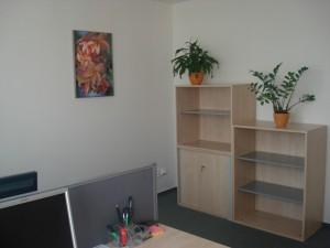 devin_flexi_kancelar_bratislava